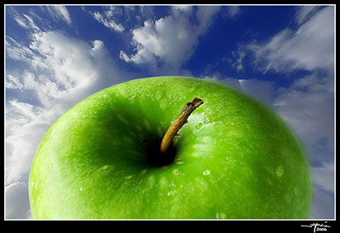 Manzana de Adán