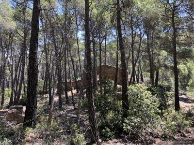 Ruinas de la minería